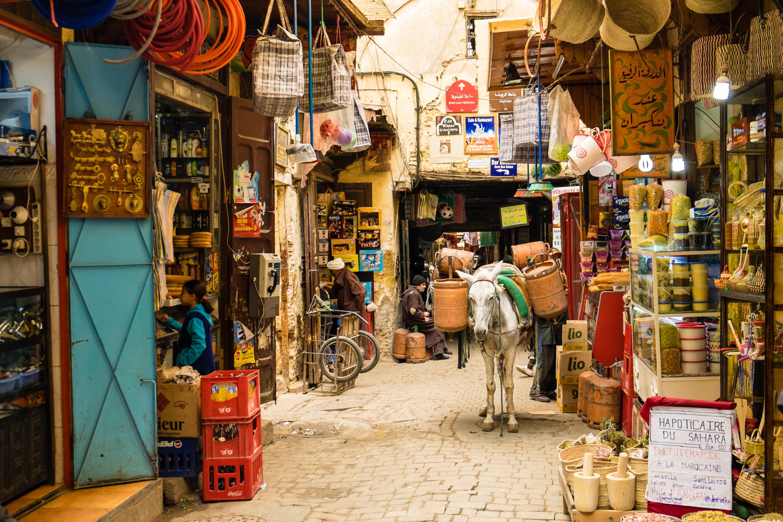 Genevieve Hathaway_Morocco_Fez_Medina_street scene with donkey